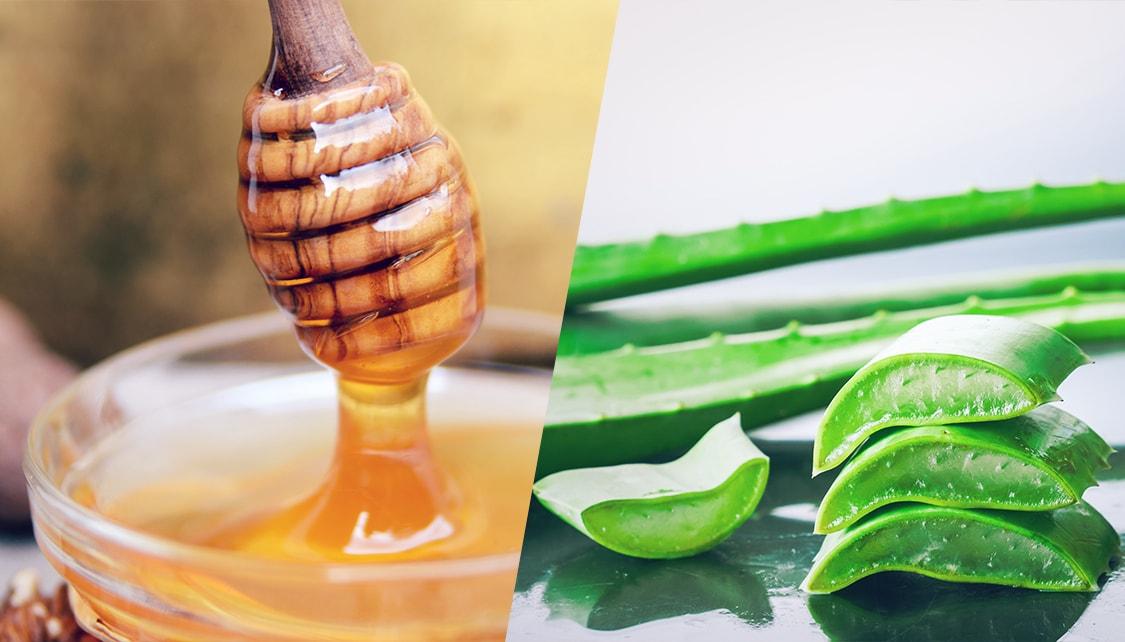 Aceite de coco, miel y aloe vera útiles para curar heridas